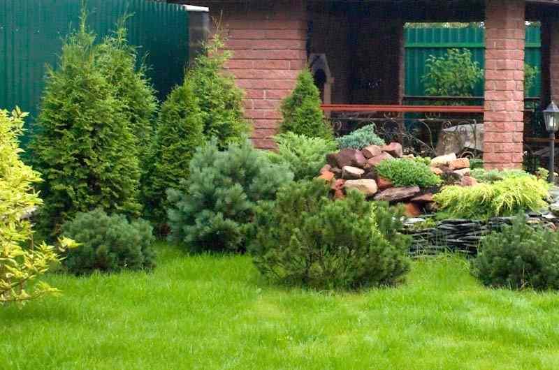 Как организовать ландшафтное озеленение?
