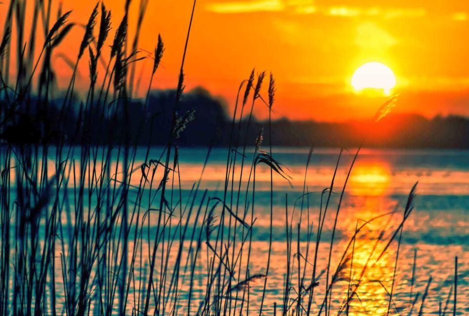Рыболовные базы в дельте Волги – идеальный вариант для начинающих рыбаков