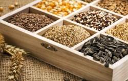 Как выбирать семена?