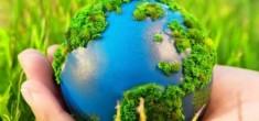 Где заказывать услуги в области экологического проектирования?
